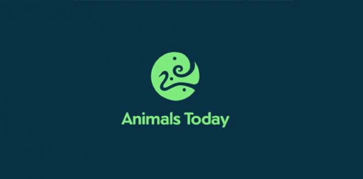 Animales-Hoy