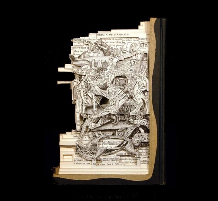 ブックアート彫刻-socialdesignmagazine27