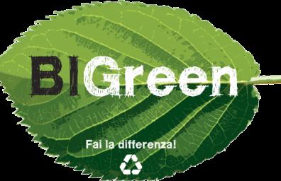 logo web bigreen
